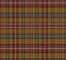 02526 Davidson County, Tennessee E-fficial Fashion Tartan Fabric Print Iphone Case by Detnecs2013