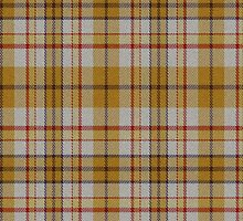 02529 City and County of Denver, Colorado E-fficial Fashion Tartan Fabric Print Iphone Case by Detnecs2013
