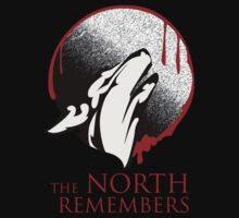 The North Remembers by QuinOfWesteros