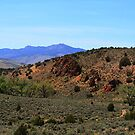Pinnacles,North of Reno Nevada USA by Anthony & Nancy  Leake