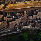 Cliff Palace Mesa Verde National Park by Marvin Collins
