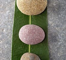 Zen stones and leaves by kvvpst
