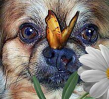 Peace Love Doggie by Kristie Theobald