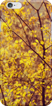 mellow yellow by Ingz