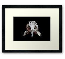 Ophthalmosaurus Framed Print