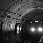 Chicago L Train by Steven Williams