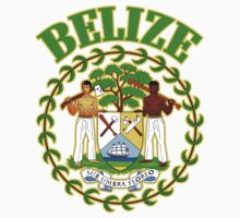 Belize Coat of Arms by GreatSeal