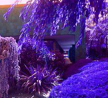 Purple and Lavender Garden by Jane Neill-Hancock