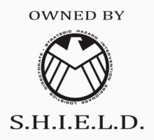 Owned by S.H.I.E.L.D. by DangerLine