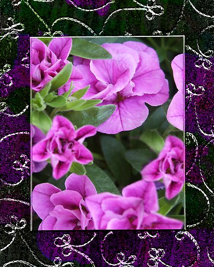 Mini Petunias Blended With Lace Stitched Frame  by Sandra Foster