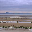Firth of Forth by Kasia-D