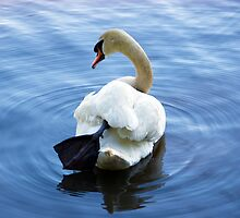 Serenity of the Swan by TheSoulosphere