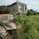 Derelict Morris and old truck on an abandoned farm by Frank Kletschkus