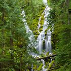 Upper Proxy Falls by DArthurBrown