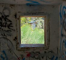 Looking through the window. by philw