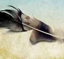 Memory of a quill by vinpez