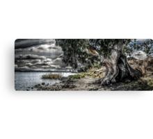 Natures Grip Canvas Print