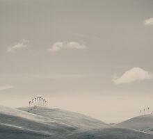 The Hills by Laurie Search