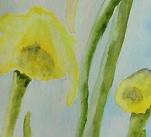 Daffodils by Deborah Pass
