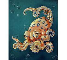 Blue-ringed Octo Photographic Print