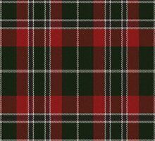 02557 Ramsey County, Minnesota E-fficial Fashion Tartan Fabric Print Iphone Case by Detnecs2013