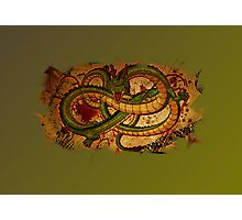 CHINESE DRAGON. Photographic Print