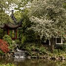 Chinese garden in spring by TheaDaams