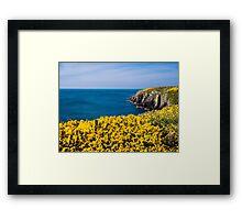 St Non's Bay Pembrokeshire Framed Print