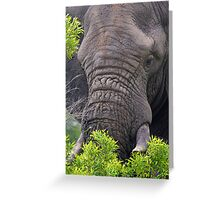 Content Greeting Card