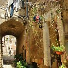 Above a Medieval Lane-Calcata, Italy by Deborah Downes