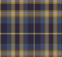 02567 Lake County, Indiana E-fficial Fashion Tartan Fabric Print Iphone Case by Detnecs2013
