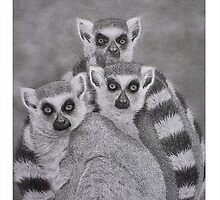 Ring-Tailed Lemurs Looking from a Distance by eworxs