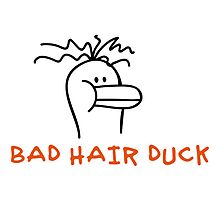Bad Hair Duck by chrisbears