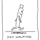 Jay Walking by mouseman
