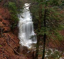 Ganoga Falls Roars in the Misty Glen by Gene Walls