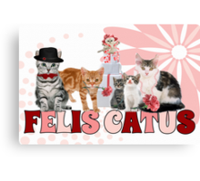 Felis Catus - for the Cat Lover's Eyes Only Canvas Print