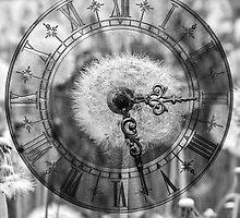 Dandelion Clock by missmoneypenny