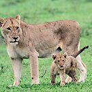 Tsalala mom and cub by jozi1