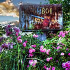 Mailbox, Rusted by Kyle Wilson