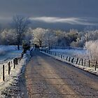 Frosty Sparks Lane (HDR) by photodug