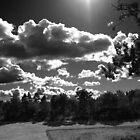 Dark sky by onelasttrick