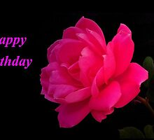 HAPPY BIRTHDAY~ by RoseMarie747