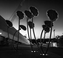 Solar Mushrooms Adelaide Festival Centre. by Nick Griffin