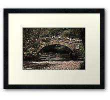 Teign Bridge Framed Print