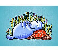Sea Turtle and Manatee Photographic Print