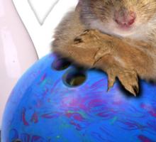 Bowling Squirrel Sticker
