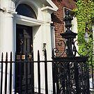 Doors of Dublin by bubblehex08