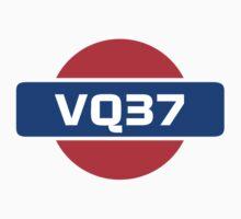 VQ37 Nissan Engine by ApexFibers