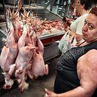 Chicken or Pork by Farfarm