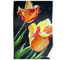 SUN-KISSED TULIPS Poster
